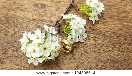 Flowering Branch With White Delicate  Surface. Declaration Of Love, Spring.  Greeting. Wedding Bouqu