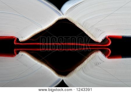 Spine Of A Book