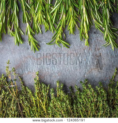 Thyme and rosemary sprigs on the stone table square ** Note: Visible grain at 100%, best at smaller sizes