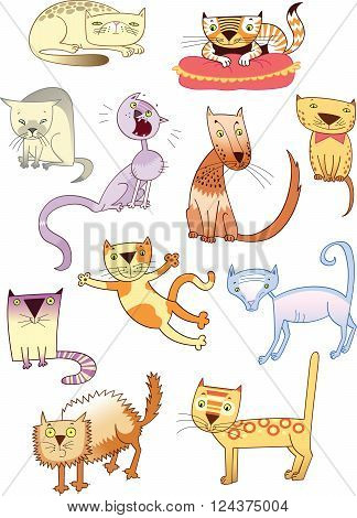 Set of eleven different cats. Vector cartoon cats.
