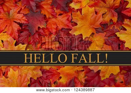 Hello Fall Message Fall Leaves Background and text Hello Fall