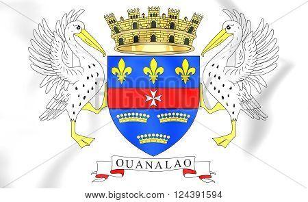 Flag Of Saint Barthelemy