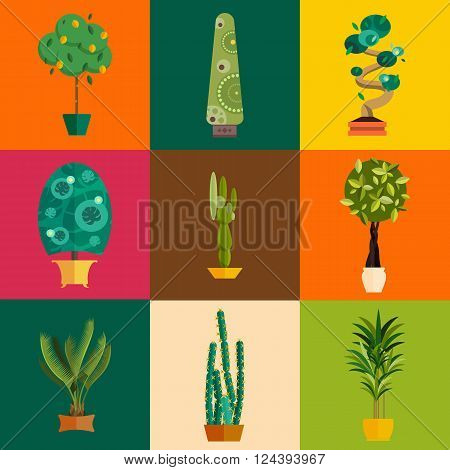 Vector Set of indoor plants in pots. Illustration of floor trees homeplants for interior. Plants for home decoration. Potted tree homeplants with names. Big floor homeplants tree set.