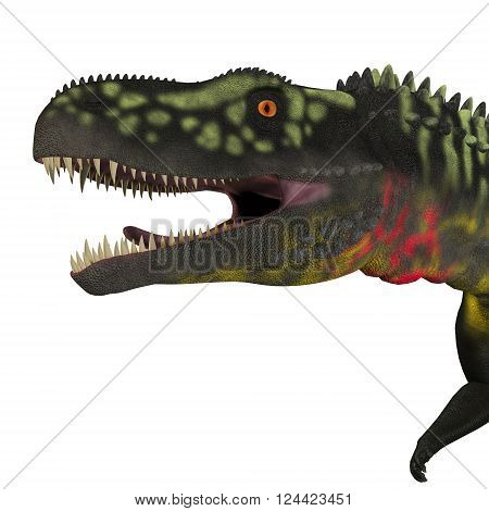 Arizonasaurus Dinosaur Head 3D illustration - Arizonasaurus was a sailback carnivorous archosaur that lived in Arizona North America in the Triassic Period. poster