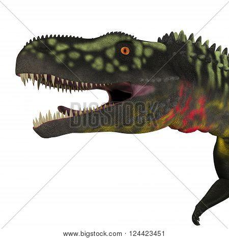 Arizonasaurus Dinosaur Head 3D illustration - Arizonasaurus was a sailback carnivorous archosaur that lived in Arizona North America in the Triassic Period.