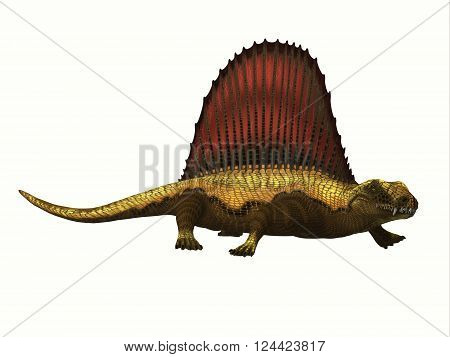 Dimetrodon Reptile Profile 3D illustration - Dimetrodon was a mammal-like sailback reptile that lived in the Permian Period of North America and Europe. poster