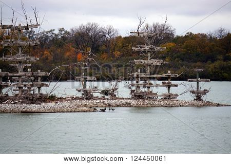 The Lake Renwick Heron Rookery Nature Preserve, in Plainfield, Illinois, provides nesting platforms for herons, cormorants and egrets, on an island in Lake Renwick