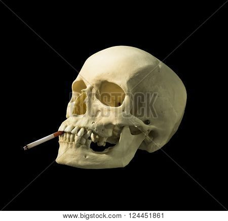 human skull with a cigarette on a black background