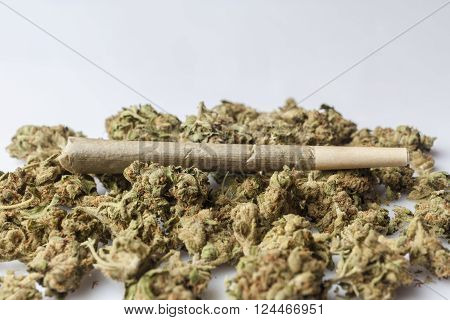 Medical cannabis rolled joint on dried marijuana buds on white background from side