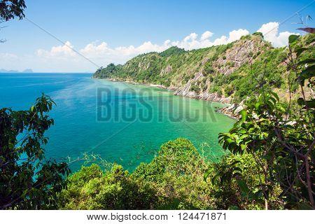 sea and jungle