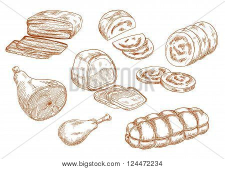 Tasty nutritious roasted beef tenderloin and dry cured ham, chicken leg and baked meatloaf, sausages and wurst. Sketches of meat products for restaurant menu, butcher shop or recipe book design