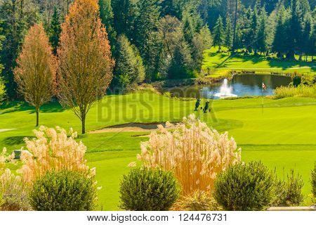 Golf course with gorgeous green and pond.
