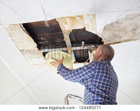 Man Collecting Water In basin From Ceiling. Ceiling panels damaged huge hole in roof from rainwater leakage.Water damaged ceiling . poster