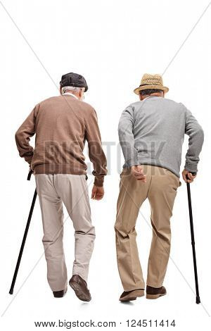 Two elderly people walking with canes isolated on white background, rear view