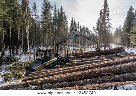 Forestry. Image of logger loads timber in winter woods