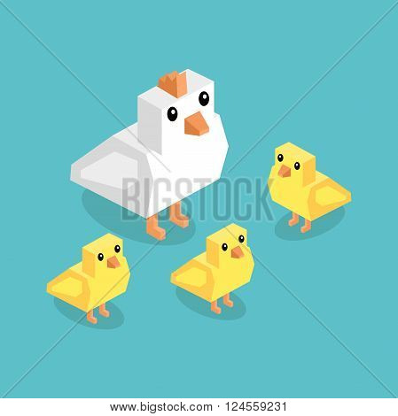 Isometric white chicken with yellow chick. Isometric white 3d chicken with yellow chickens isolated on background, cute a little young farm bird fluffy, adorable small bird poultry vector illustration