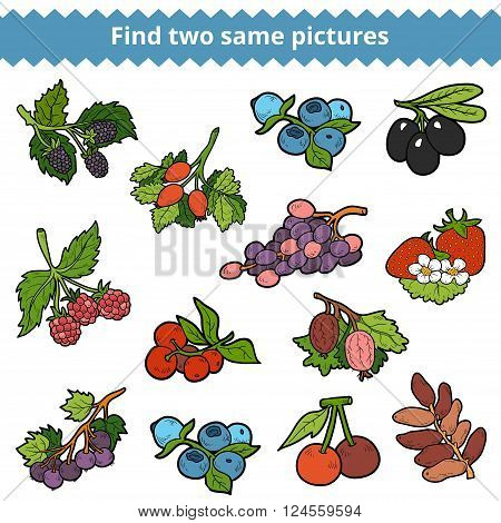 Find Two Same Pictures. Vector Set Of Berries