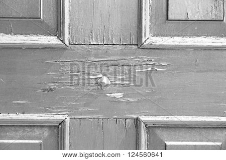 In Italy  Europe  Home Texture Of A  Wooden  Door And Nail