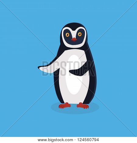 Animal penguin design flat. Bird penguin vector, cartoon polar animal winter isolated, wild penguin character illustration