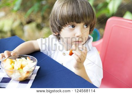 Lovely Boy Having Picnic