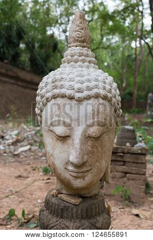 buddha statue in wat umong chiang mai travel thai temple in northern thailand thailand