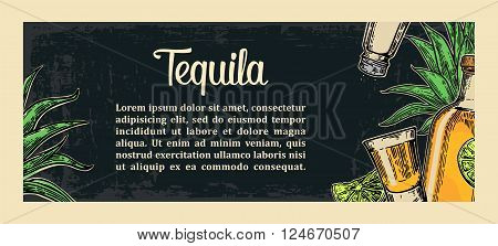 Mexican traditional food restaurant menu template with tequila lime botlle glass cactus salt. Vector vintage engraved illustration on dark background. For poster web