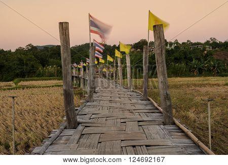 Beautiful view of Zu Tong Pae bamboo bridge pass rice field at sunset in Mae Hong Son, Thailand