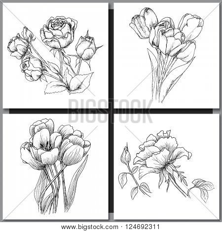 Set of Romantic vector background with hand drawn flowers isolated on white.  Ink drawing illustration. Line art sketching. Floral design for wedding invitations, cards, congratulations, branding.