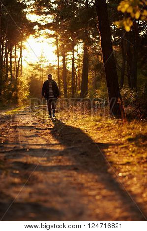 Early morning shot of a young man walking through woodland