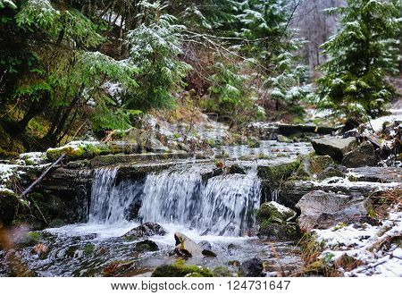 A small stream in mountains winter forest