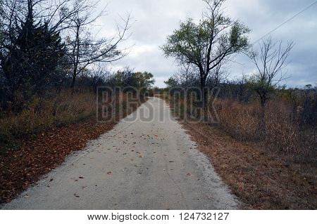 A footpath in the Lake Renwick Heron Rookery Nature Preserve in Plainfield, Illinois, during the autumn.