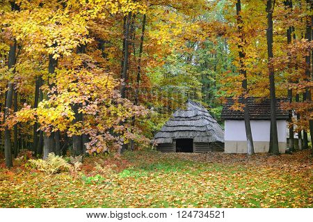 Old Hut With A Straw Roof In Autumn Forest. Ukrainian Museum Of Life And Architecture