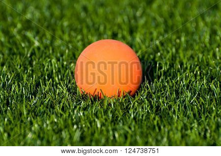 An orange lacrosse ball on artificial turf. poster
