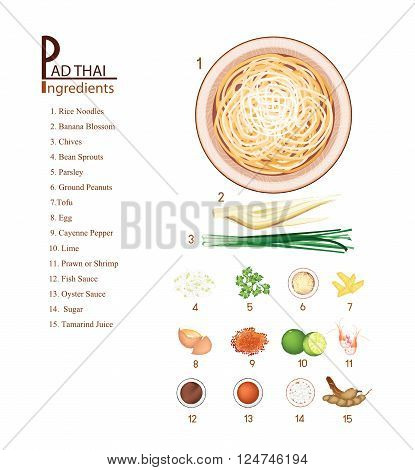 Thai Cuisine, 16 Ingredients Pad Thai or Thai Stir Fried Noodles. One of The Most Popular Dish in Thailand.