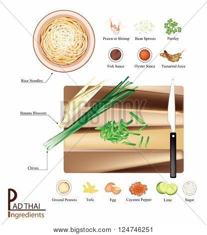 Thai Cuisine, 16 Ingredients Pad Thai or Traditional Thai Stir Fried Noodles. One of The Most Popular Dish in Thailand.