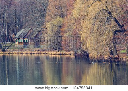 Rural romanian house near a lake with wild duck on it in the spring