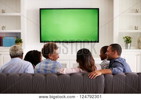 Multi generation family watching TV and laughing, back view