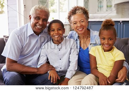 Grandparents and their young grandchildren at home, portrait