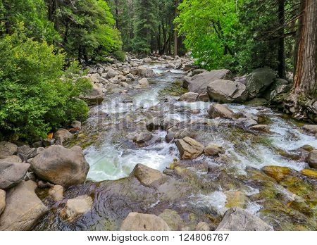 Flowing water over rocks down a river through a forest