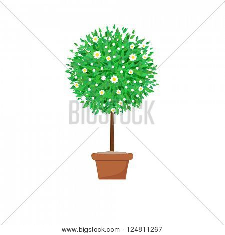 Potted tree with flowers. Spring tree vector illustration