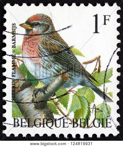BELGIUM - CIRCA 1992: a stamp printed in the Belgium shows Common Redpoll Acanthis Flammea Bird circa 1992