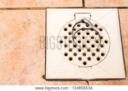 Bunch of hair trapped at bathroom shower drain trap outlet poster