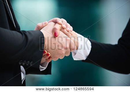 Cordial business handshake close up, horizontal image