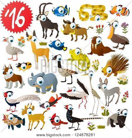 set of animals antelope, impala, snake, warthog, clown fish, grouper, fish, pelican, llama, husky, canadian goose, porcupine, walrus, iguana, heron, stork, badger, pheasant, rhinoceros, saiga, lemming
