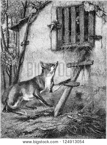 Painting Exhibition of 1857, The Fox and the Grape, vintage engraved illustration. Magasin Pittoresque 1857.
