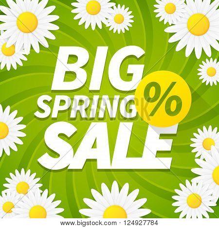 Seasonal big spring sale business background with daisy flower. editable. vector.