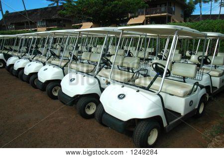 Tropical Golf Carts