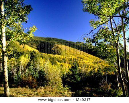 Auturm Mountain Glory