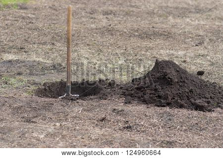 Spade, hole and heap of soil in early spring garden
