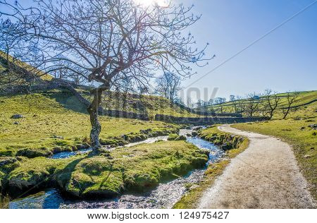 Malham Beck with public footpath beside and trees set in an attractive landscape near Malham Cove. North Yorkshire, England.